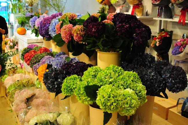 цветочный рынок Гонконг