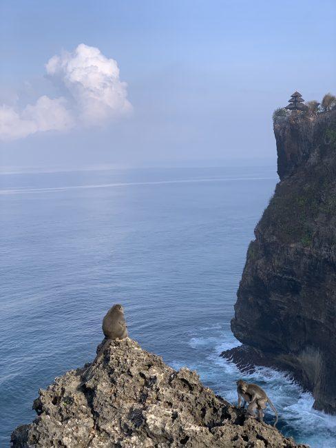 Uluwatu Temple – обезьяны